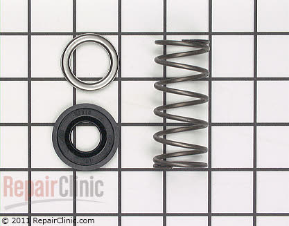 Spring and Seal Kit (OEM)  285672