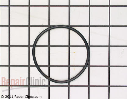 Pump Gasket (OEM)  154246901