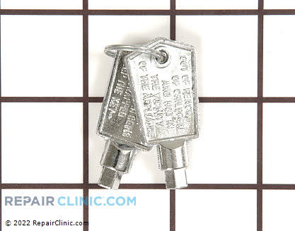 Door Key (OEM)  WR05X10007