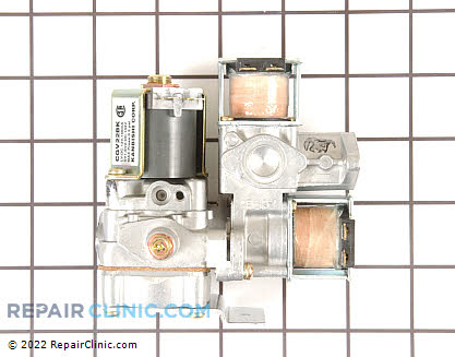 Gas Valve Assembly (OEM)  WE01X10201