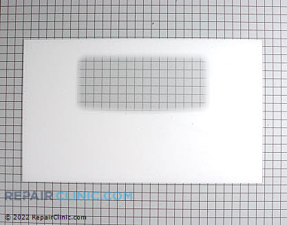 Outer Door Glass (OEM)  5303935204 - $173.90