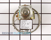 Temperature Control Thermostat 216303600