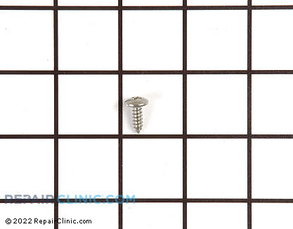 Screw (OEM)  489355