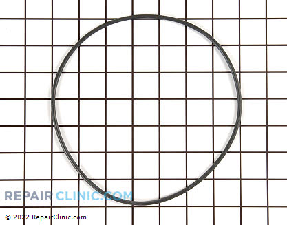 Pump Gasket (OEM)  99001797, 752096