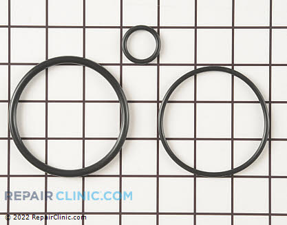 O-Ring (OEM)  WS35X10001
