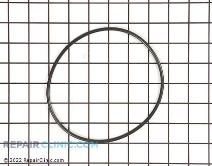O-Ring (OEM)  WS03X10054