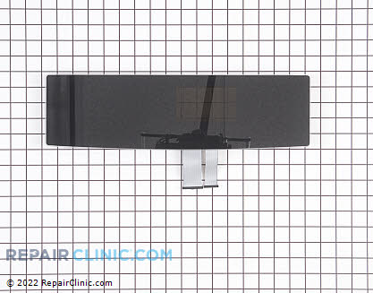 Touchpad (OEM)  318387130