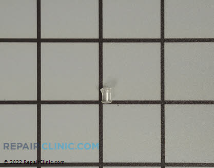 Light Lens Cover (OEM)  316557300