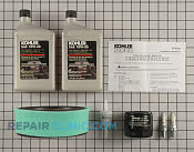 Tune Up Kit - Part # 1602693 Mfg Part # 24 789 01-S