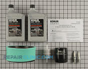 Tune Up Kit - Part # 1602695 Mfg Part # 24 789 03-S