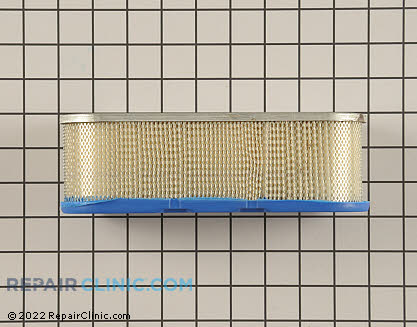 Air Filter, Briggs & Stratton Genuine OEM  399806S