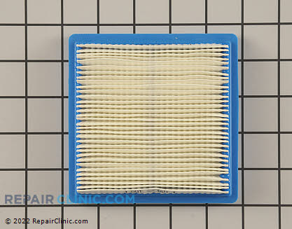 Air Filter, Briggs & Stratton Genuine OEM  399877S