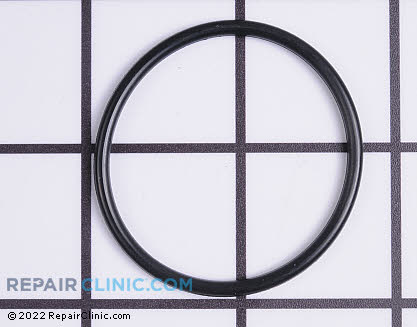 O-Ring, Briggs & Stratton Genuine OEM  697123, 1611150