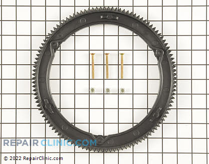 Flywheel Ring Gear, Briggs & Stratton Genuine OEM  499612