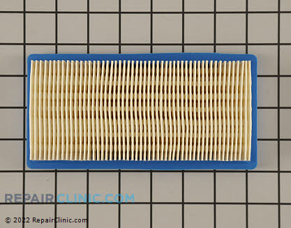 Air Cleaner 491384          Main Product View