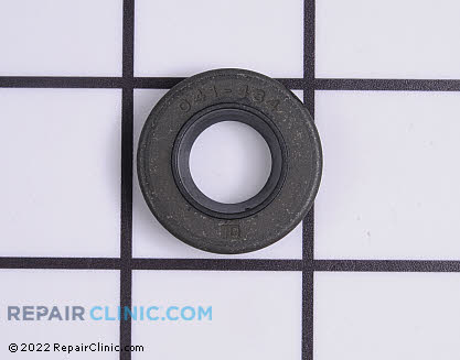 Oil Seal, Briggs & Stratton Genuine OEM  691952