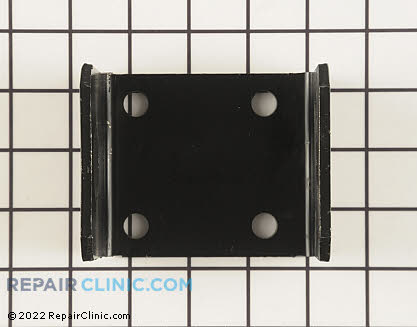Bracket (Genuine OEM)  124036X