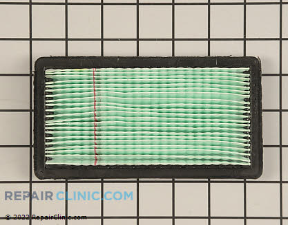 Air Filter (Genuine OEM)  078601