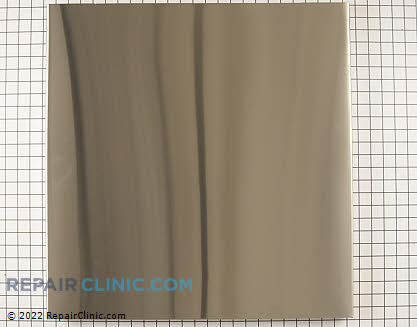 Outer Door Panel (OEM)  WD31X10096