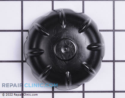 Hub Cap (Genuine OEM)  731-2290A