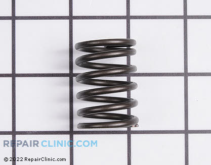 Valve Spring 694865          Main Product View
