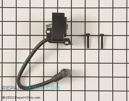 Ignition Coil (Genuine OEM)  753-05301