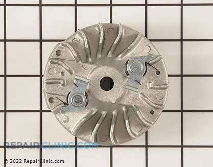 Flywheel (Genuine OEM)  300952002