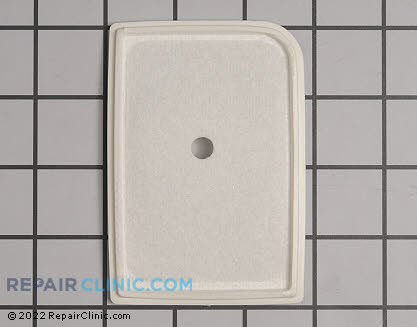 Air Filter (Genuine OEM)  13031003360