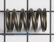 Valve Spring - Part # 1751851 Mfg Part # 49078-2068