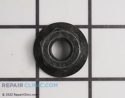 Flange Nut (Genuine OEM)  530015793, 1982507