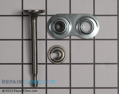 Intake Valve 37289 Main Product View