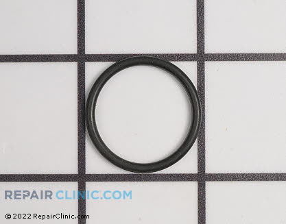 O-Ring (Genuine OEM)  9.081-417.0