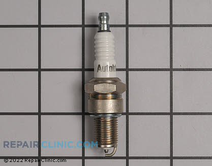 Spark Plug (Genuine OEM)  490-250-0009
