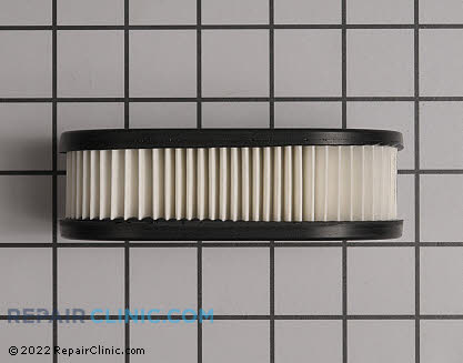 Air Filter, Briggs & Stratton Genuine OEM  798452