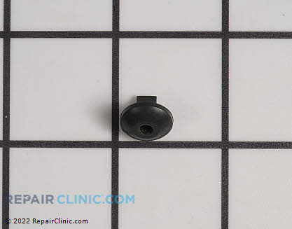 Check Valve (Genuine OEM)  13131400330