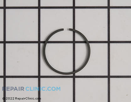 Piston Rings (Genuine OEM)  A101000090