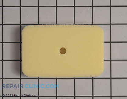 Air Filter (Genuine OEM)  13031003460