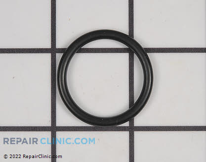 O-Ring (Genuine OEM)  90072100025