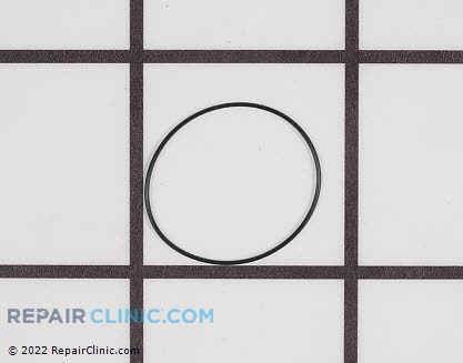 O-Ring (Genuine OEM)  P005000280