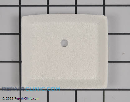 Air Filter (Genuine OEM)  13031003930