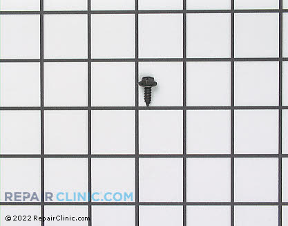 Screw 302868 Main Product View