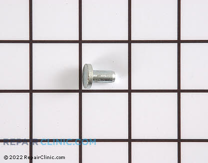 Hinge Pin 3018614 Main Product View