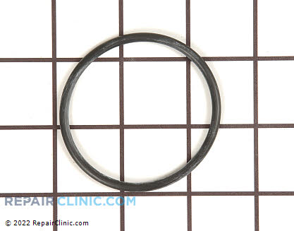 O-Ring WS03X10045 Main Product View