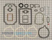 Gasket Set - Part # 1604127 Mfg Part # 480-339