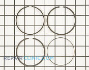 Piston Ring Set - Part # 1610819 Mfg Part # 499425