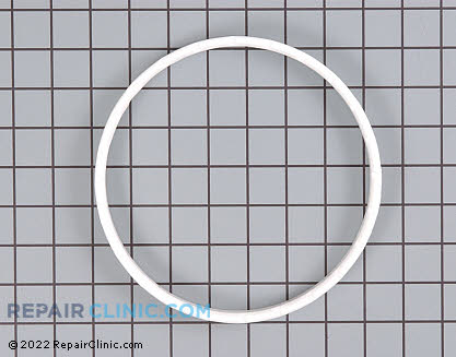 Snubber Ring 40037401        Main Product View