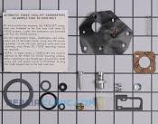 Carburetor - Part # 1604611 Mfg Part # 494622