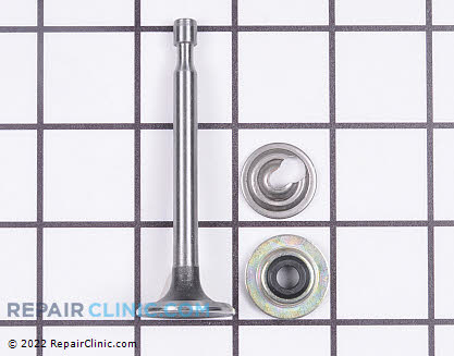 Intake Valve 37711 Main Product View