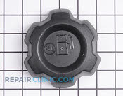 Gas Cap - Part # 1925414 Mfg Part # 21547354