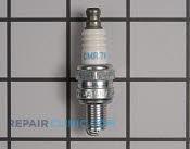 Spark Plug - Part # 1863437 Mfg Part # 3066